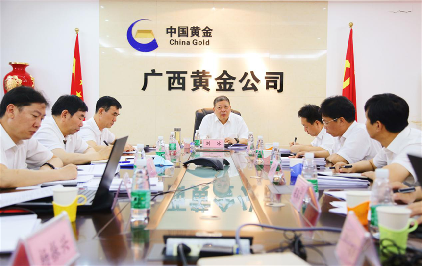 集团公司党委副书记、董事、总经理刘冰赴广西公司调研并召开区域企业工作汇报会